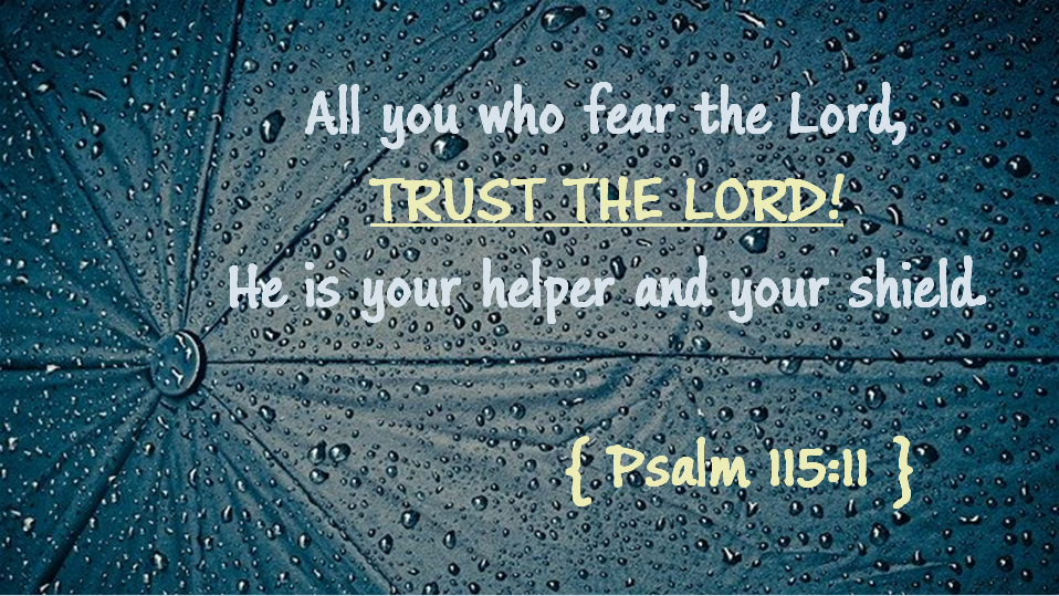 Psalm 115 11
