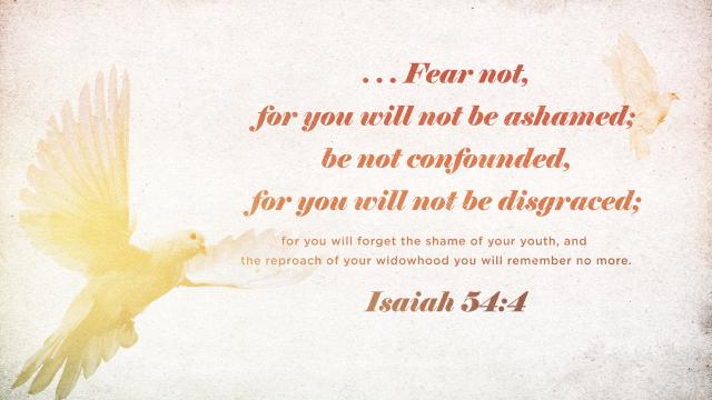 Isaiah 54 4